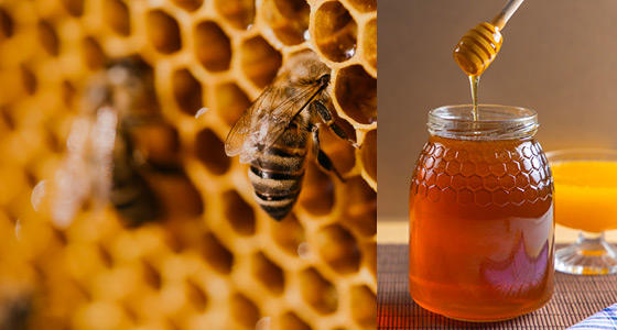 Self Cleaning Filtration of honey